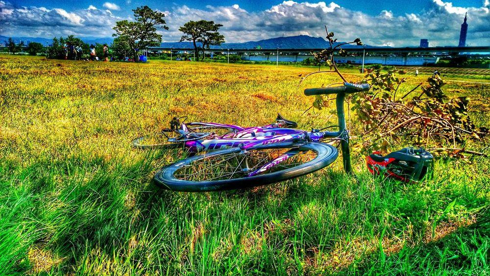 Enjoying The Sun Picnic Taking Photos Happy :) Bicycle 101