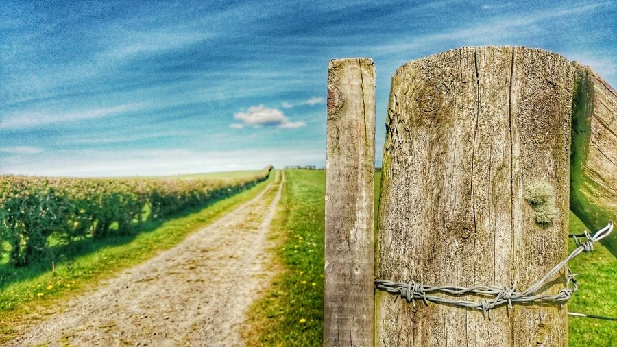 Close-up of wooden fence on field by dirt road against sky during sunny day