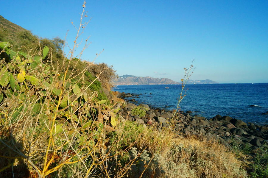 Beach Beach Photography Beauty In Nature Cactus Cactus Collection Day Holiday Isalnd Island Italiy Montains And Water  Nature Outdoors Salina Sea Sea And Sky Sicily Sky And Clouds Sun Sunset Sunset_collection