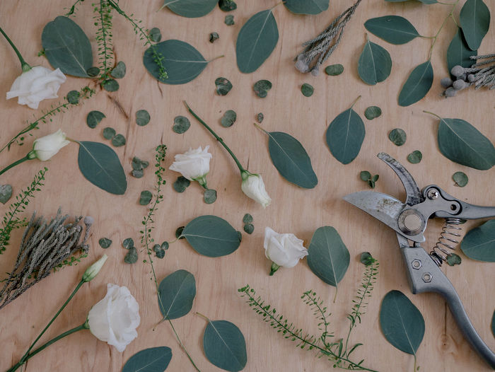✂️🌿☘️ Beautiful Mess Brunia DIY At Home Deceptively Simple Flower Arrangement Background Beauty In Nature Close-up Diy Project Eucalyptus Eucalyptus Tree Eustoma Florist Floristics Floristry Flower Head Flower Shop Flowers Collection  Masterclass Petals Plywood Pruner Simplicity Thlaspi Work In Progress Business Stories