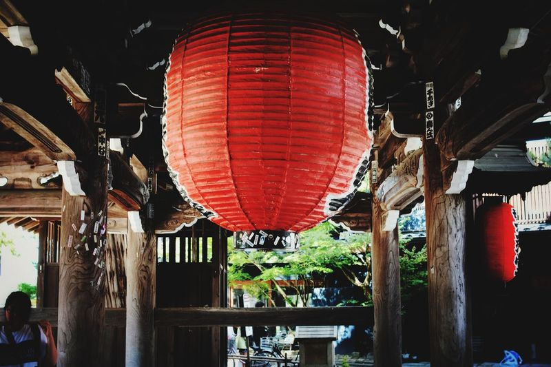 Ultimate Japan 天橋立 Sunny Vacations Red Candle Lightning Light Temple Architecture Gate Garden Wood Lantern Chinese Lantern Hanging Lighting Equipment Illuminated Architecture Celebration 知恩寺 Kyoto 京都 Balloon Battle Of The Cities Sommergefühle EyeEm Selects