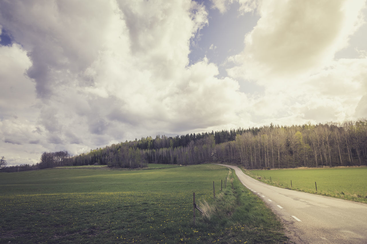 cloud - sky, sky, plant, tree, tranquil scene, scenics - nature, tranquility, beauty in nature, land, no people, day, landscape, nature, non-urban scene, environment, grass, field, transportation, road, green color, outdoors