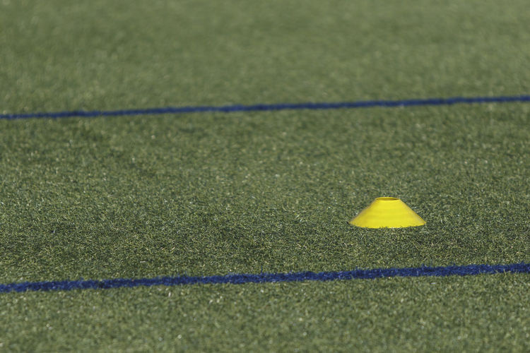 football field Grass Plant Sport Yellow No People Day Selective Focus Green Color Nature Soccer Outdoors Team Sport Playing Field Soccer Field Absence High Angle View Sunlight Direction Shadow Single Line Turf Dividing Line