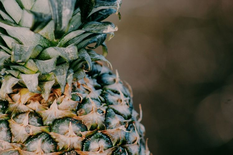 Pineapple Fruit Fresh Healthy Food Healthy Vitamins Structure And Nature Structures Darkness And Light Natural Light Delicious ♡ Delicious Bokehlicious Bokeh Foodphotography