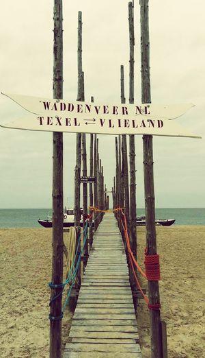 Wadden Sea Texelpics
