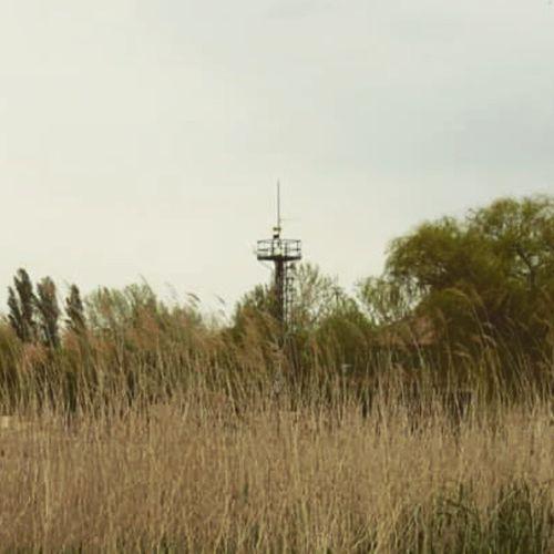 Lighttower Lake Balaton Nature Hungary Storm Warning Wind Reed Canon Fonyód Mik Ikozosseg The Great Outdoors - 2016 EyeEm Awards
