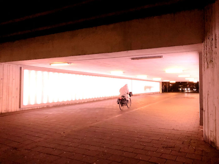 Man riding bicycle on illuminated street at night