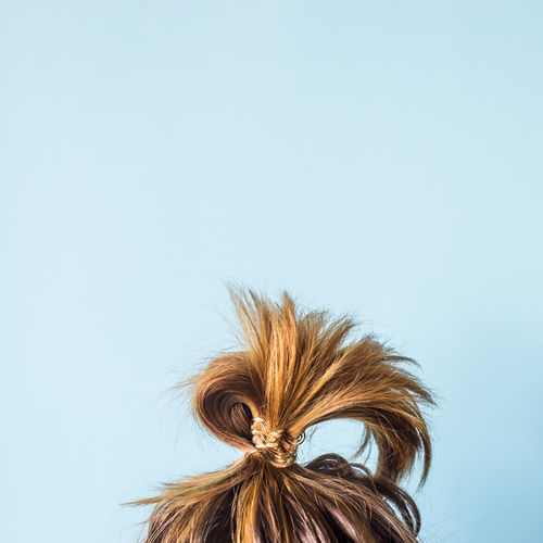 A disheveled bunch on the head of a dark-haired woman. The hair is tied with a transparent spiral elastic band. Modern fast hairstyle. Against a blue background. Copyspace Band Bright Dark Dark Hair Hair Messy Stylish Woman Background Blue Bun Hairstyle Messy Hair One Person Stylish Girl Stylish Hairstyle.  Transparent