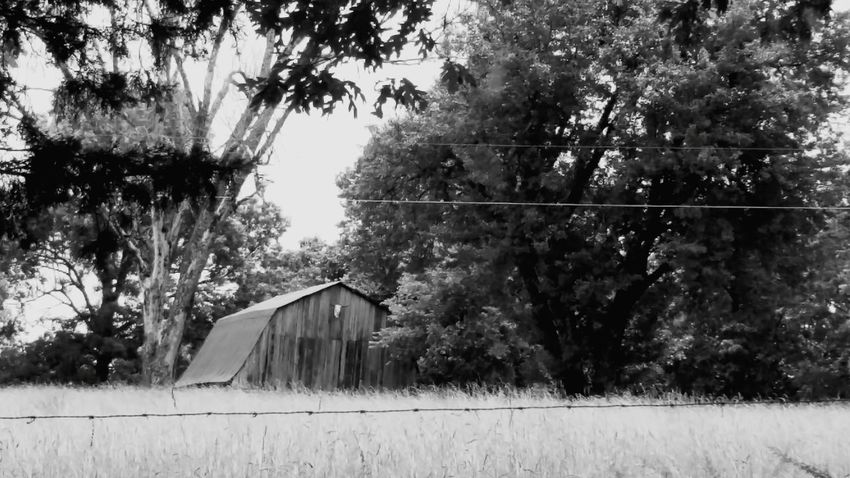 Black And White Down On The Farm farm life Check This Out Old Barn Barn Hayfield Arkansas Outdoors Scenics Nature Arkansas, USA Outdoors Landscape