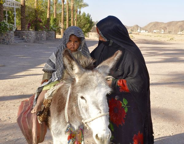 Little Boy sitting on a Donkey Africa African Beauty Childhood Donkey Egypt Egyptian Front View Little Boy Looking At Camera Mother Portrait Showcase March Shy Shyness Taking Care Taking Care Of Kids