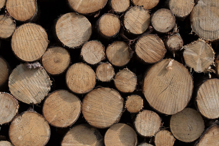 Abundance Backgrounds Brown Close-up Deforestation Firewood Forest Full Frame Heap Hoffi99 Large Group Of Objects Log Lumber Industry No People Outdoors Pattern Stack Timber Tree Wood Wood - Material Wood Grain Woodpile