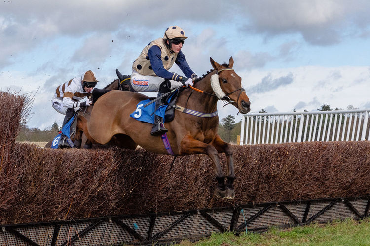 Point to point racing at Ampton this afternoon. Racing Horse Racing Point To Point Point To Pointing Point To Point Racing Horses Domestic Animals Animal Themes Horse Horseback Riding Ride Riding Herbivorous Jumping Fence Hurdle Suffolk, United Kingdom Ampton