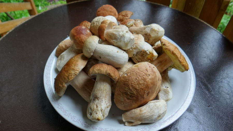 Porcini Mushrooms In Plate On Chair