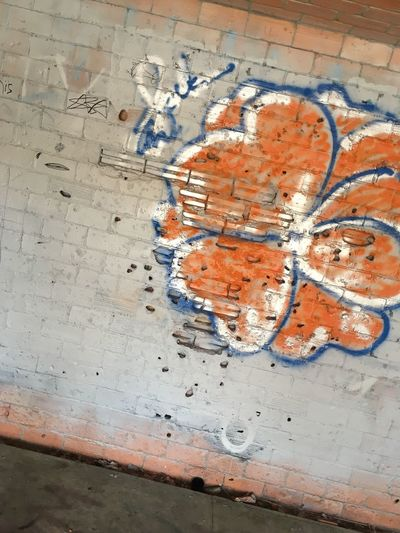 Hawiian Flowers Flower Graffiti Spray Paint Art And Craft Map Indoors  No People Creativity Paint Architecture Messy High Angle View Orange Color Pattern Drawing - Art Product Design Wall - Building Feature