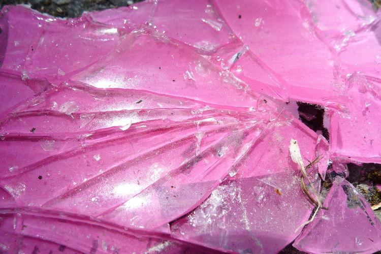 Full frame shot of pink leaf