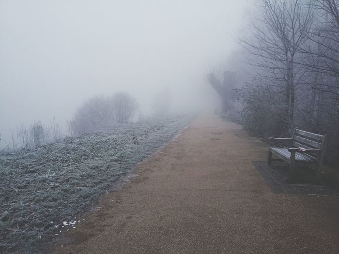 Some more fog Landscape Outdoors Road Morning Light Path Richmond London Morning London Tranquility Fog Weather Winter Beauty In Nature No People River Thames