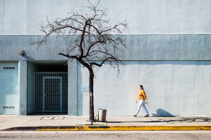 beach street... del rey, los angeles... Tree One Person Built Structure Bare Tree Building Exterior Outdoors Los Angeles, California Fuji X100t Fujifilm_xseries Streetlife Street Photography Yellow Edward Hopper Bright Sun Sidewalk