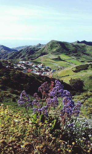 Tenerife Island Iles Canaries Las Montanas De Anaga