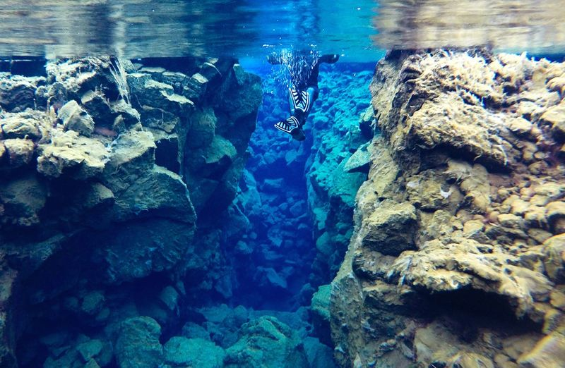 Between two plates. silfra, Iceland. Water Underwater Blue Beauty In Nature Swimming Nature Iceland Silfra Tectonic Clear Water Close-up Sea UnderSea No People Day Backgrounds Refraction Outdoors Animal Themes Sea Life Aquarium