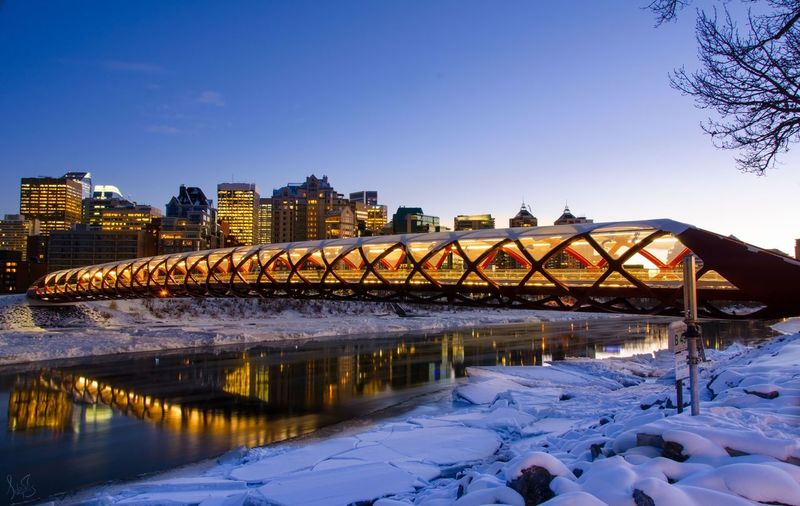 🌁🇨🇦Peace Bridge🇨🇦🌁 Bridge Peace Calgary Canada Alberta Landscape_photography Cityscapes City Hiking Enjoying Life Night Nightphotography Photography Long Exposure Landscape_Collection Eye4photography  Colors Winter Landscape EyeEm Best Edits EyeEm Best Shots Downtown Taking Photos Citylife Streetphotography