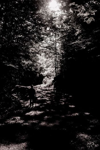 "Be. Ready. ""Percorso"" One Person Walking Forest Nature Silhouette Full Length Outdoors Beauty In Nature Growth People Tree EyeEm Nature Lover Leaves Adventure Exploring Travel Scenics Tranquility Blackandwhite Wild Trekking Mountain WoodLand Real People"
