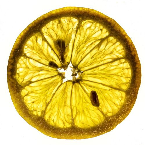 White Background Fruit Cross Section Studio Shot Circle Healthy Eating Citrus Fruit Food Freshness SLICE Food And Drink Green Color No People Yellow Close-up Day Lemon Lemons Structure Form Macro Photography Macro Freshness Paint The Town Yellow Food Stories