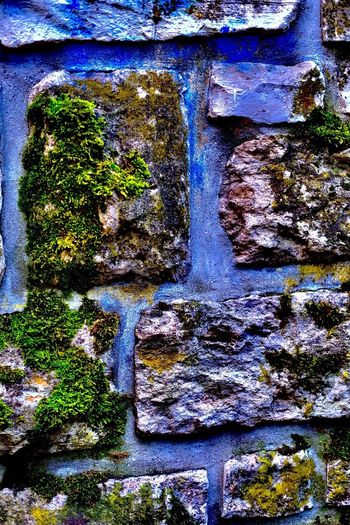 View of blue and moss on rocks