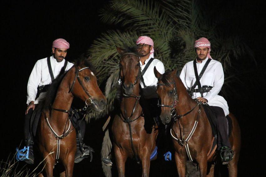 3 horsemen. EyeEm Selects Horse Horseback Riding Domestic Animals Riding Mammal Mid Adult Mid Adult Men One Animal Gambling Jockey Full Length People Only Men Night Men Adult Mature Adult Outdoors Teamwork
