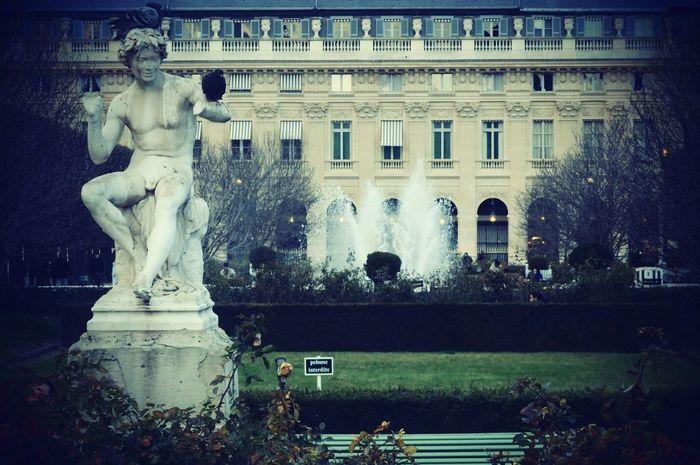 Statue Fountain Sculpture Water Tree Building Exterior Architecture Day Travel Destinations Outdoors City Paris Paris, France  Palais Royal Pigdeon Parisian Cliché Tranquil Scene ParisianLifestyle