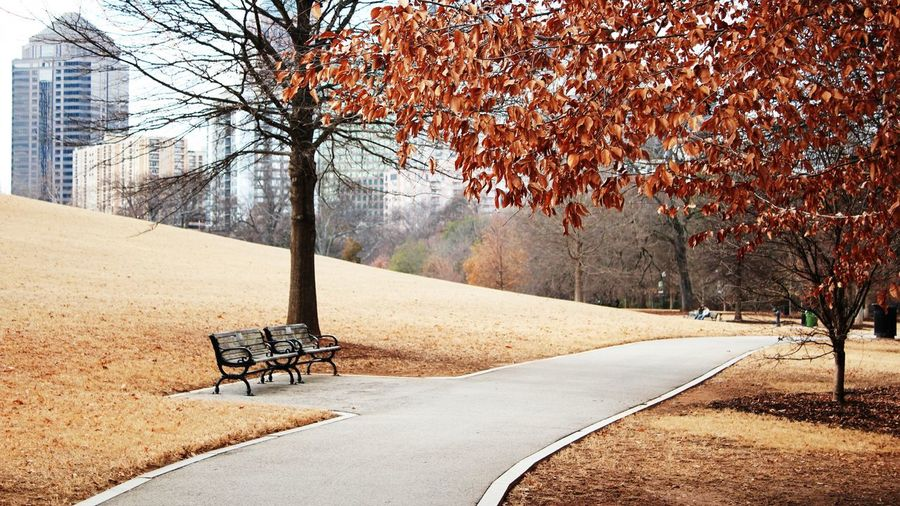 Empty benches at park