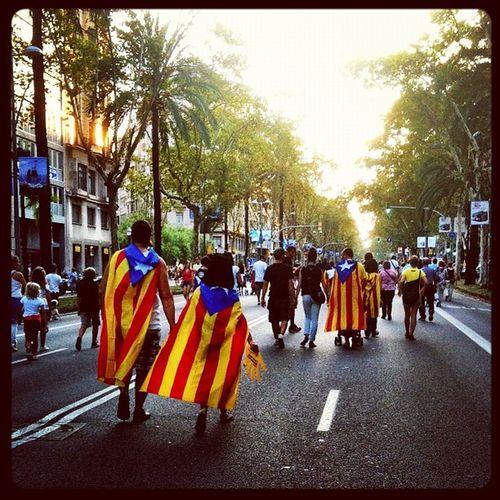 Caminant cap a la independència. Igersbarcelona Igersbcn Clubsocial Diada2012 Barcelona 11s2012 10likes Independencia 15likes