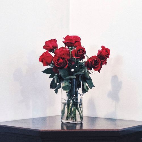 Roses 🌹 Flower Freshness Indoors  Red Fragility Vase Flower Head Rose - Flower Simplicity Flower Arrangement Beauty In Nature Close-up Purity Red Color