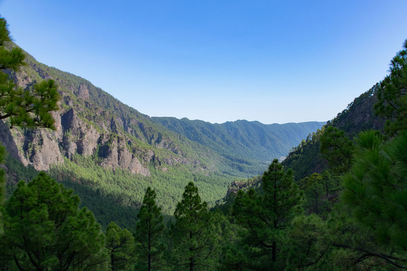 Looking south along the volcanic ridge in La Palma, Canary Islands, Spain Mountain Scenics - Nature Sky Beauty In Nature Tranquil Scene Tree Tranquility Mountain Range Plant Landscape Environment Non-urban Scene No People Nature Clear Sky Day Idyllic Land Green Color Forest Outdoors Mountain Peak La Palma, Canarias Volcanic Landscape Volcanic Crater