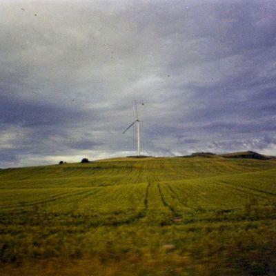 Gravinainpuglia Mytown Nofilter Analogic Photo Lasardina Wind Green Landscape