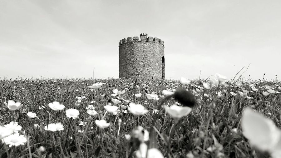 Sky Hill Tower Stone Buildings Countryside Castle Meadow Field Greenary Landscape Black And White