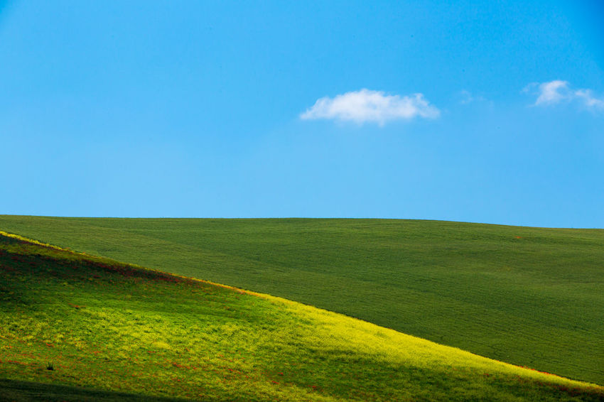 tipical springtime Basilicata landscape, southern Italy Agriculture Beauty In Nature Cloud - Sky Day Field Golf Grass Green - Golf Course Green Color Hill Horizon Over Land Land Landscape Landscaped Meadow Nature No People Outdoors Pasture Rural Scene Scenics Sky Sport Summer Tranquil Scene