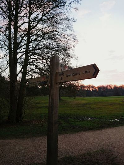 Signpost Sun Going Down Sunset Taking Photos Check This Out Hello World Walks In The Park