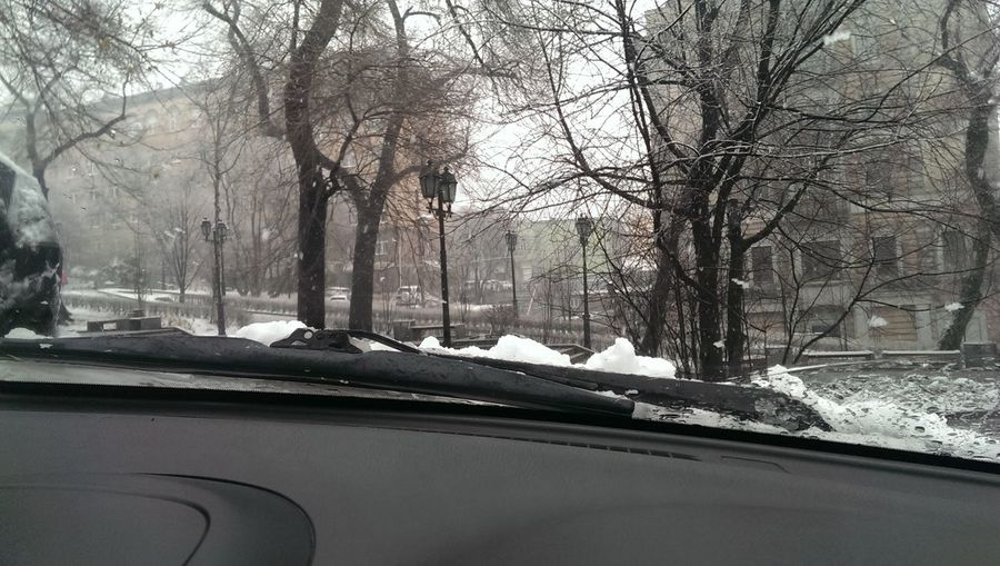 Первый крупный снег)