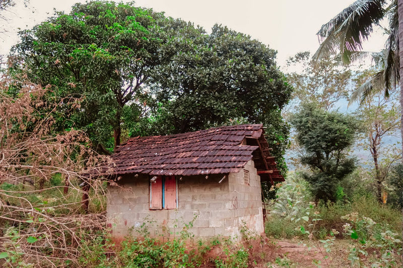 An abandoned hut Abandoned Built Structure Day Deterioration Grass Growth House Hut Incredible India India Kerala Lush Foliage No People Old Outdoors Palakkad Plant Rural Scene Tree Tree Vintage Wood - Material