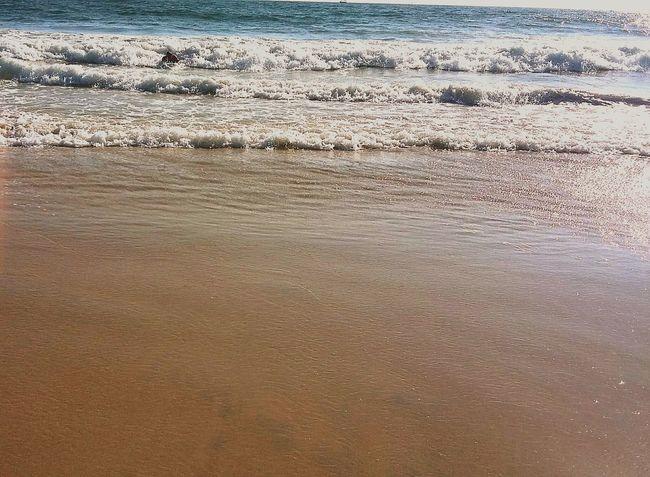 Water Nature Beach Sea Outdoors Wave Beauty In Nature Scenics Sand Sky Day Ocean Beach, Ca Ocean Beach San Diego San Diego, California