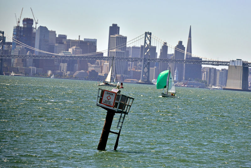 Sailing The Bay 4 San Francisco Bay Middle Harbor Port Of Oakland, Ca. Sailboats Green Sailboat Bay Bridge Bridge Span Sailing Bridge Towers Transamerica Pyramid Building Ferry Building Depth Marker Waterfront City View  Cityscape San Francisco Skyline Downtown Port Of San Francisco Calm Water Watersports Aquactic Sports Wind Power The Color Of Sport Sports