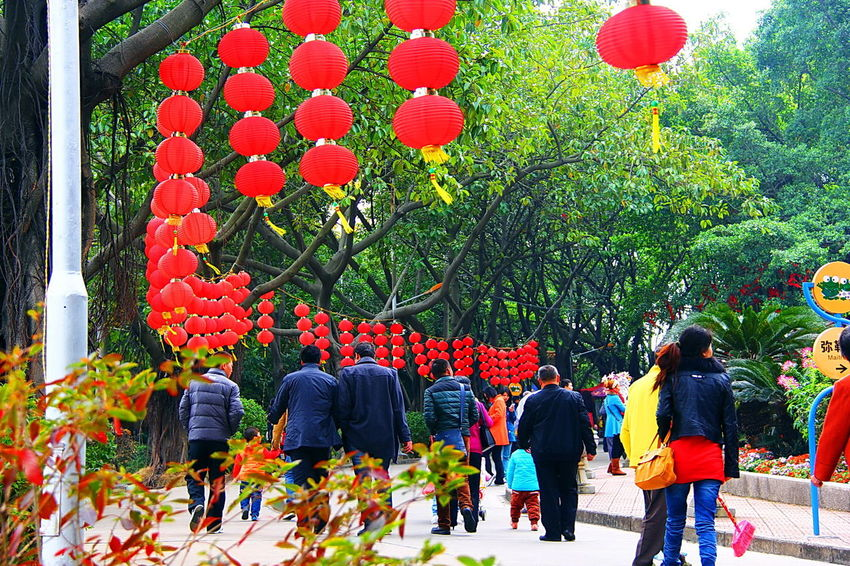 Celebration Chinese New Year Chinese New Year 2013 Colors Crowds DONGGUAN, CHANGPING TOWN Festive Season Place Of Interest Praying Showcase April Temples Traditional Culture Scenic View Devotees Colours Tourist Large Group Of People The Street Photographer - 2016 EyeEm Awards The Great Outdoors - 2016 EyeEm Awards The Photojournalist - 2016 EyeEm Awards Feel The Journey