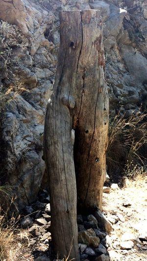 Nu Art Wood - Material