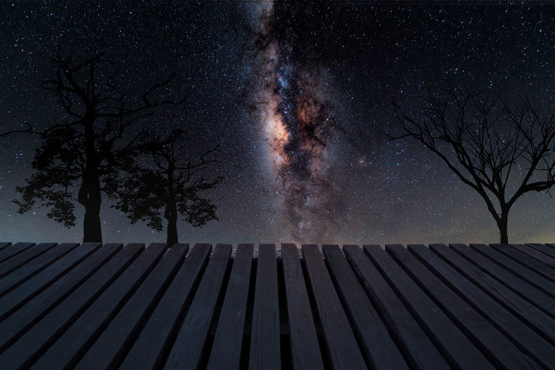 Wooden bridge at MilkyWay Background Tree Plant Sky Nature Night No People Beauty In Nature Astronomy Space Star - Space Scenics - Nature Bare Tree Tranquil Scene Tranquility Outdoors Star Architecture Wood - Material Pattern Growth