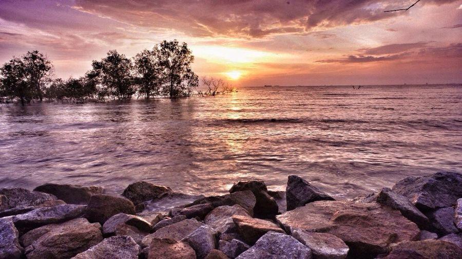Landscapes Sunset