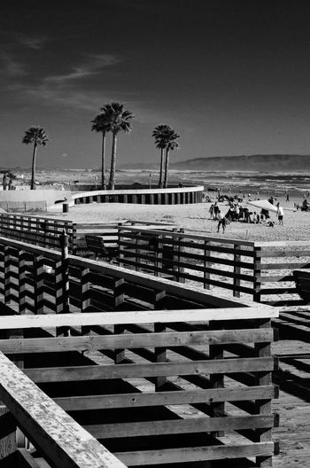 Beach Palm Tree Real People Outdoors Day Sea Sky Nature Sand Men Water Leisure Activity Lifestyles Standing Large Group Of People Tree Vacations Clear Sky Beauty In Nature Art Is Everywhere EyeEm Gallery Eye4photography  California EyeEm Scenics