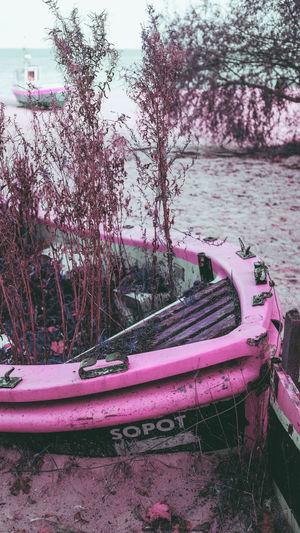 Abandoned boat moored on lake against trees