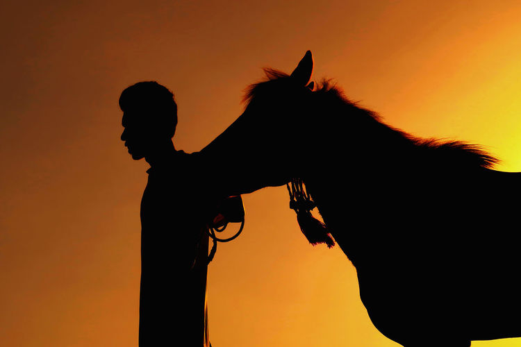 Silhouette man with horse standing against orange sky during sunset