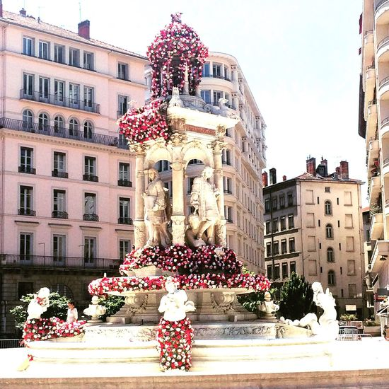 Lyon Lyon France Rose - Flower Roses Roseonly LyonCity Fountain_collection Fountain Flowerporn Artflowers Onlylyon Millennial Pink