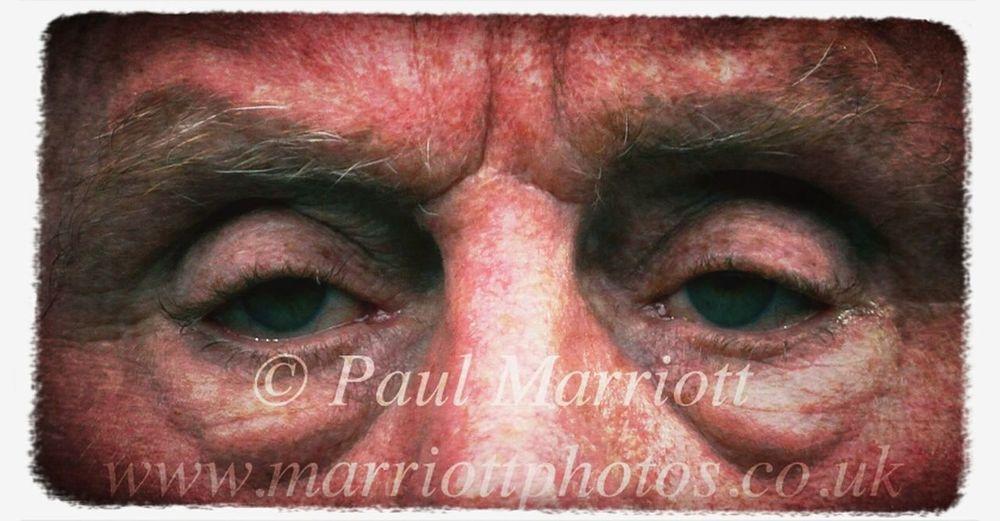 the steely eyes of Harry #harry #redknapp #qpr #eyes #determination #greatescape #loftusroad #football #mypicoftheweek #eyeem #webstagram